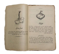 Melceü't-Tabbâhîn